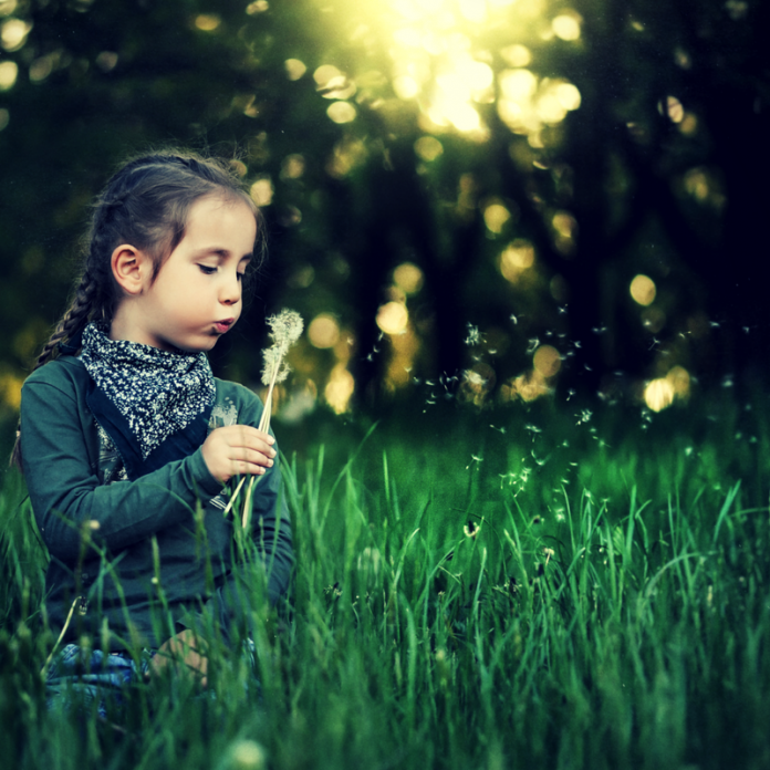 Photo of girl with dandelion clock