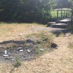 Wrexham Parks Erddig Litter Picnic