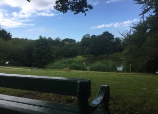 Acton Park View Scenery Bench
