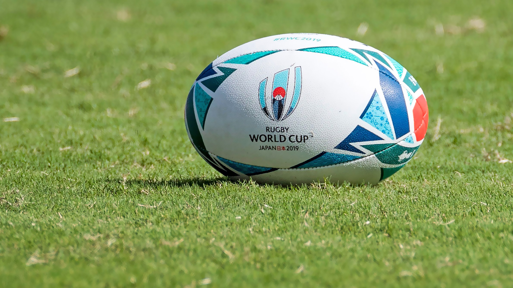 Watch The Rugby World Cup At Tŷ Pawb