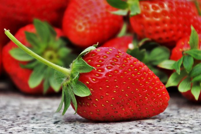 Food Recycling Strawberries