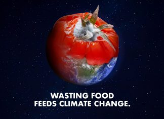 Food Waste Action Week – 'Wasting food feeds climate change'